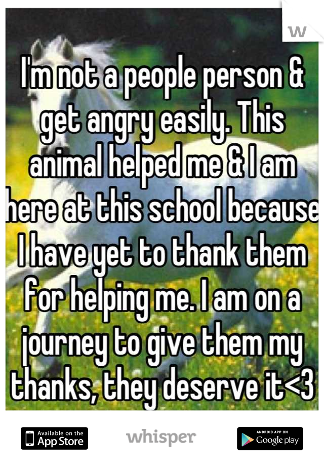 I'm not a people person & get angry easily. This animal helped me & I am here at this school because I have yet to thank them for helping me. I am on a journey to give them my thanks, they deserve it<3