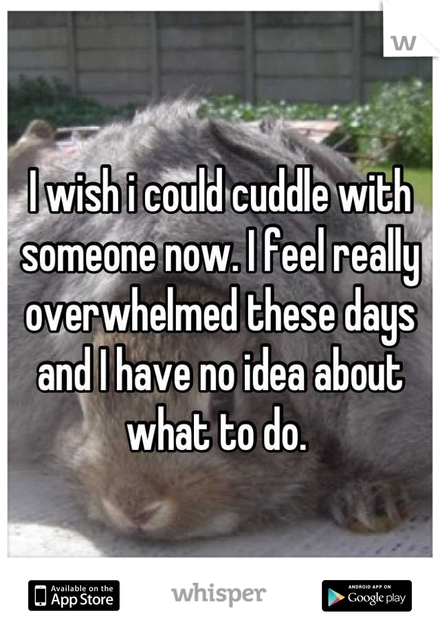 I wish i could cuddle with someone now. I feel really overwhelmed these days and I have no idea about what to do.