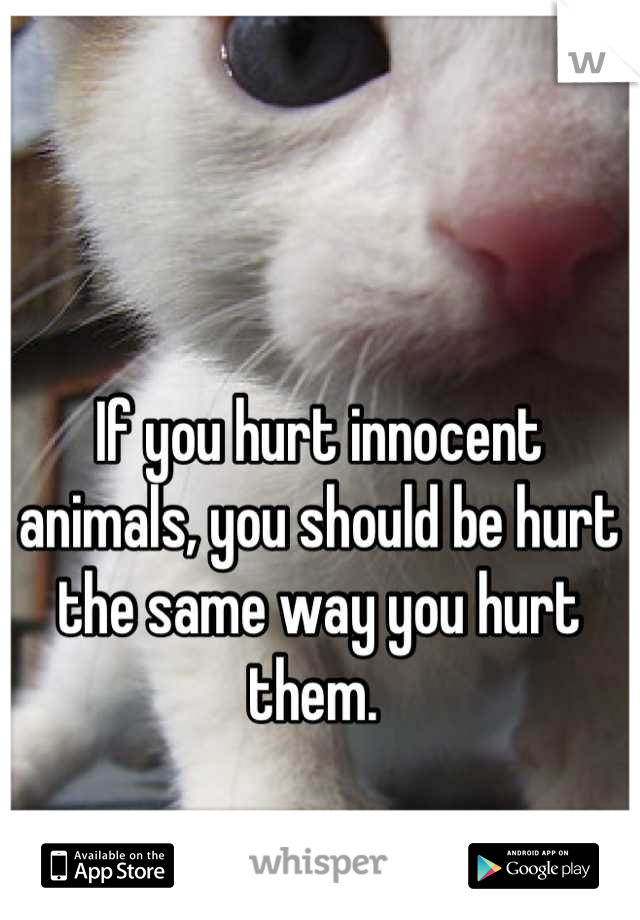 If you hurt innocent animals, you should be hurt the same way you hurt them.