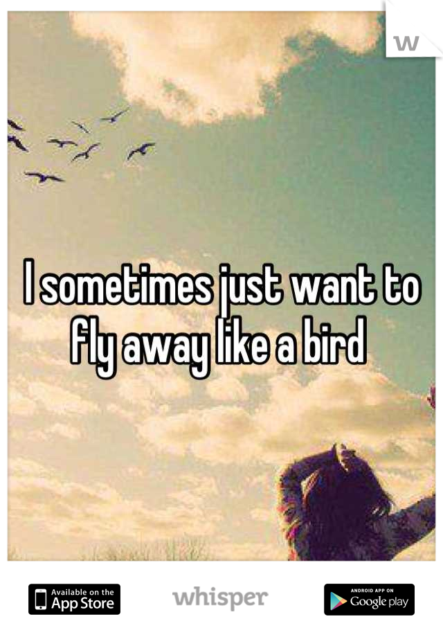 I sometimes just want to fly away like a bird