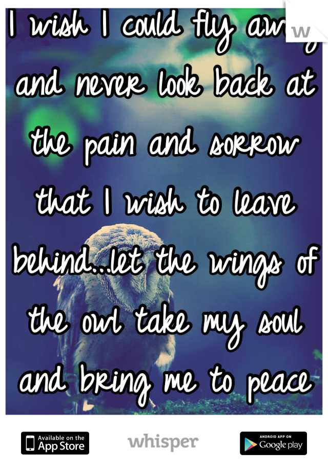 I wish I could fly away and never look back at the pain and sorrow that I wish to leave behind...let the wings of the owl take my soul and bring me to peace and tranquility!!