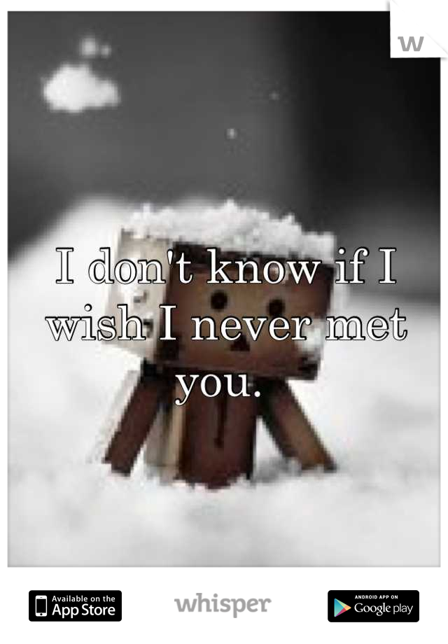 I don't know if I wish I never met you.