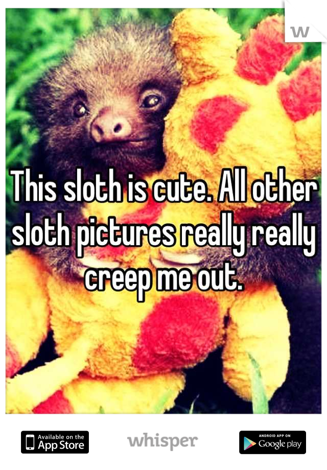 This sloth is cute. All other sloth pictures really really creep me out.