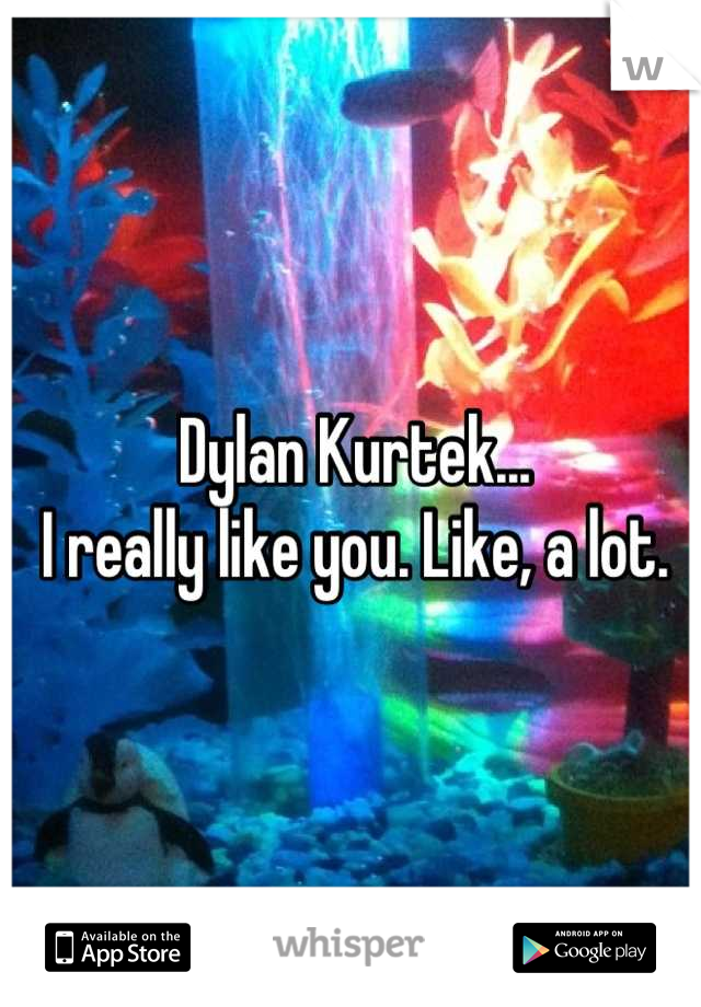 Dylan Kurtek... I really like you. Like, a lot.