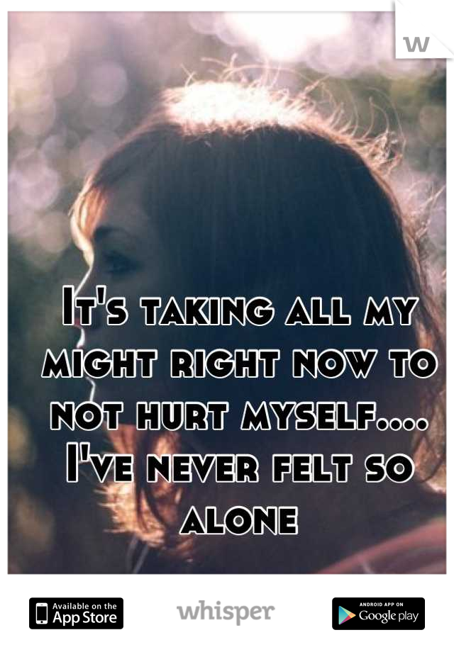 It's taking all my might right now to not hurt myself.... I've never felt so alone