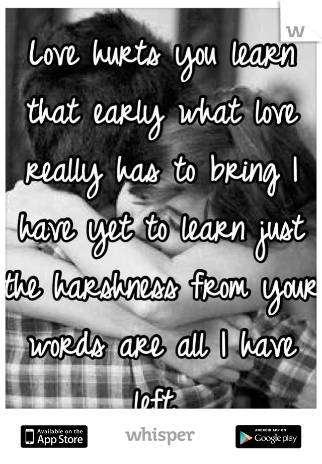 Love hurts you learn that early what love really has to bring I have yet to learn just the harshness from your words are all I have left