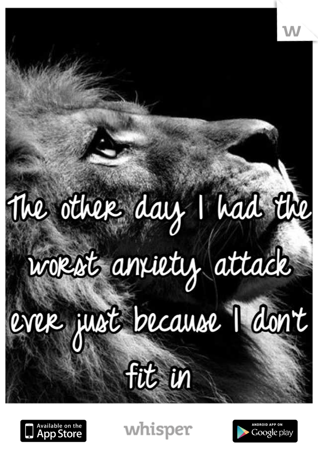 The other day I had the worst anxiety attack ever just because I don't fit in