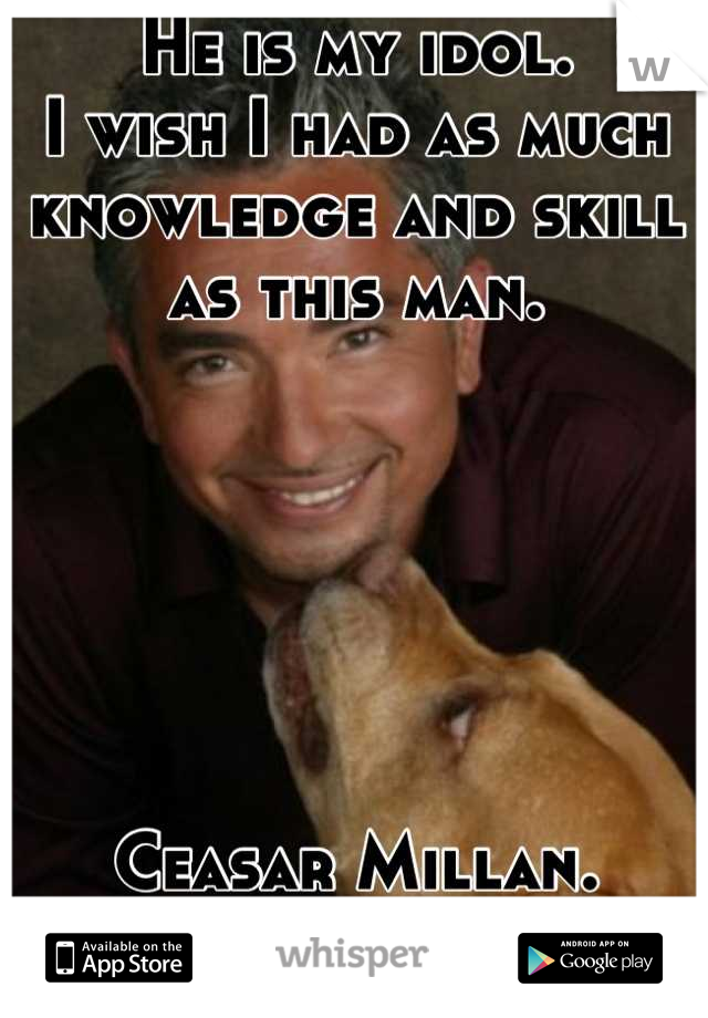 He is my idol.  I wish I had as much knowledge and skill as this man.       Ceasar Millan. (The Dog Whisperer)