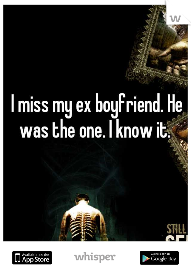I miss my ex boyfriend. He was the one. I know it.