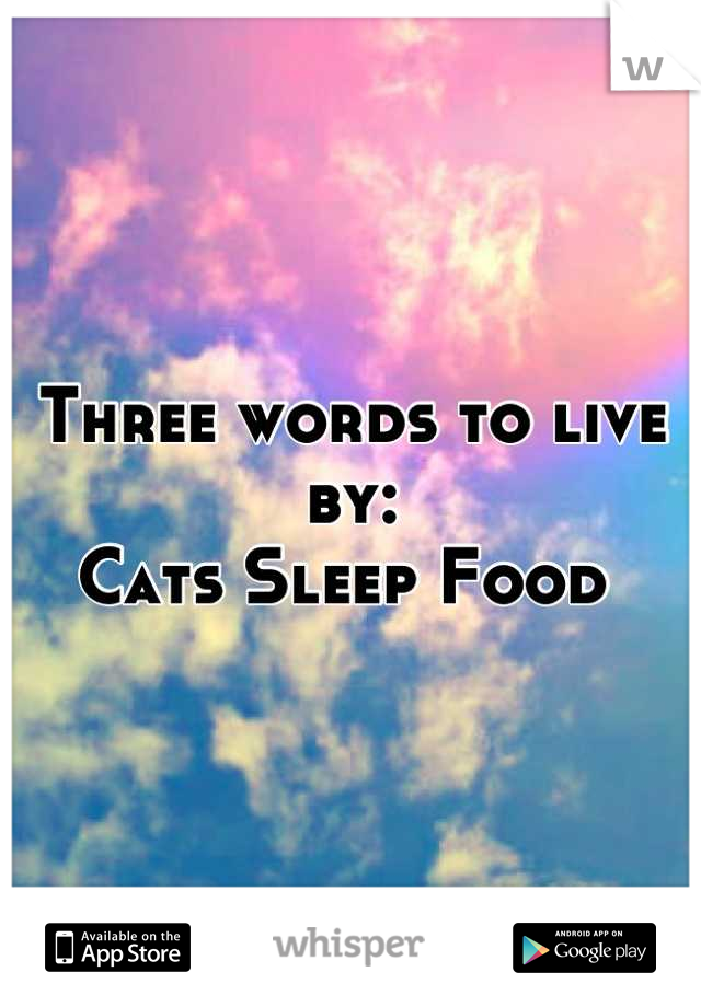 Three words to live by: Cats Sleep Food