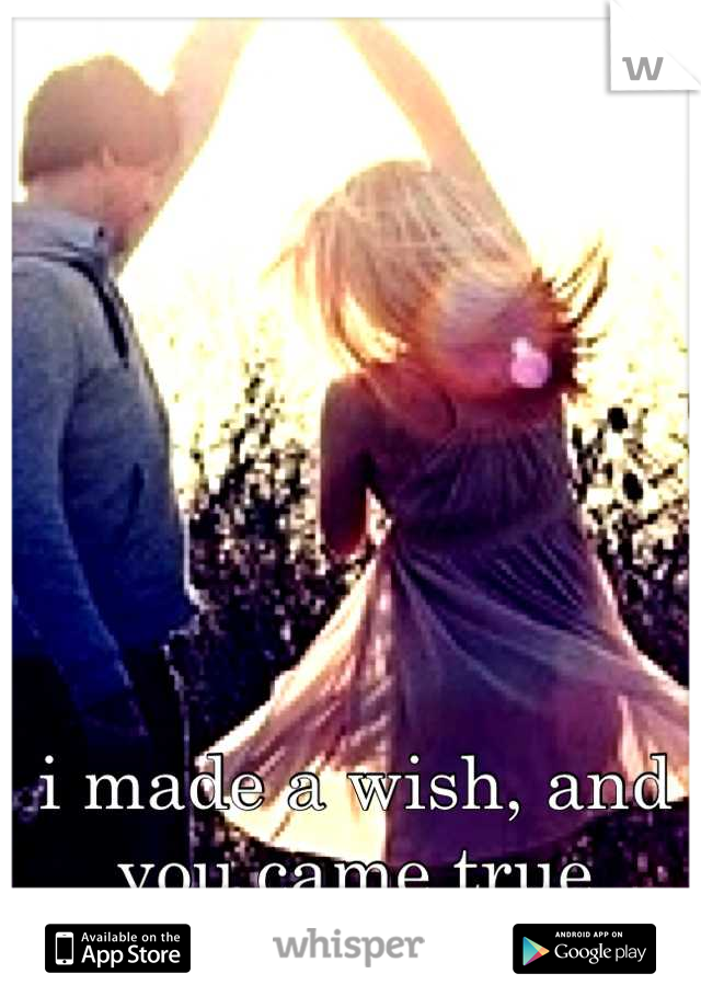 i made a wish, and you came true