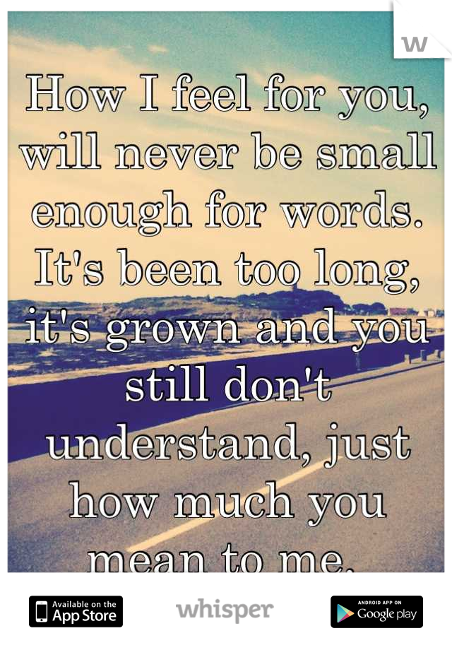 How I feel for you, will never be small enough for words. It's been too long, it's grown and you still don't understand, just how much you mean to me.