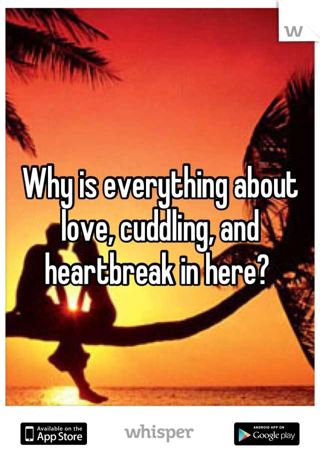 Why is everything about love, cuddling, and heartbreak in here?