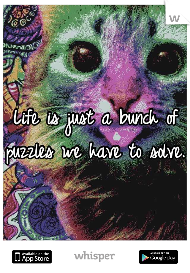 Life is just a bunch of puzzles we have to solve.