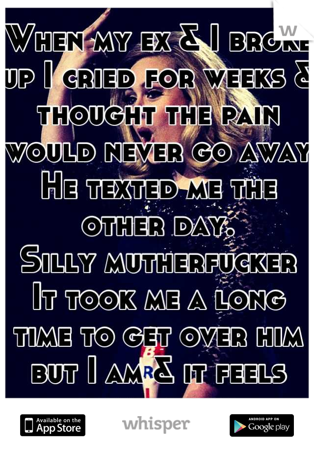 When my ex & I broke up I cried for weeks & thought the pain would never go away He texted me the other day. Silly mutherfucker It took me a long time to get over him but I am & it feels damn good