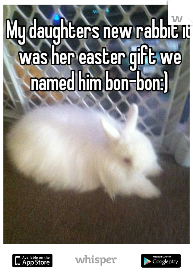My daughters new rabbit it was her easter gift we named him bon-bon:)