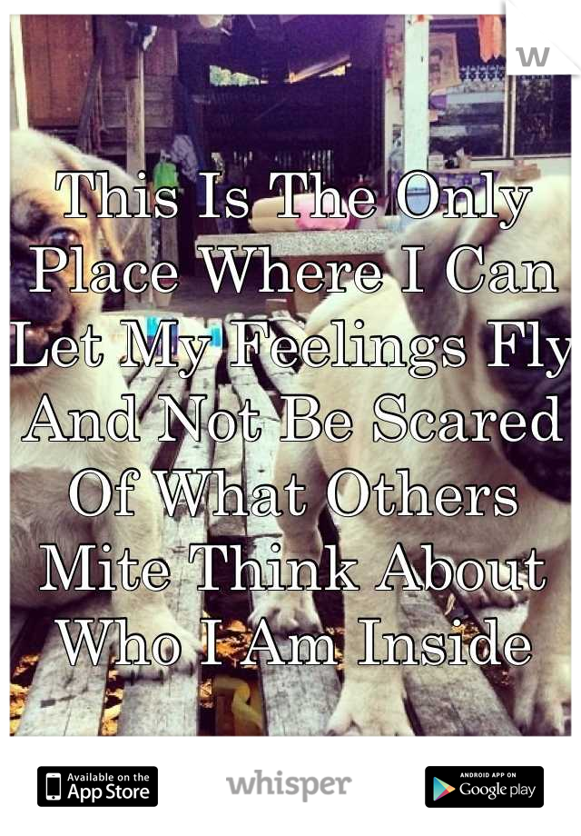 This Is The Only Place Where I Can Let My Feelings Fly And Not Be Scared Of What Others Mite Think About Who I Am Inside