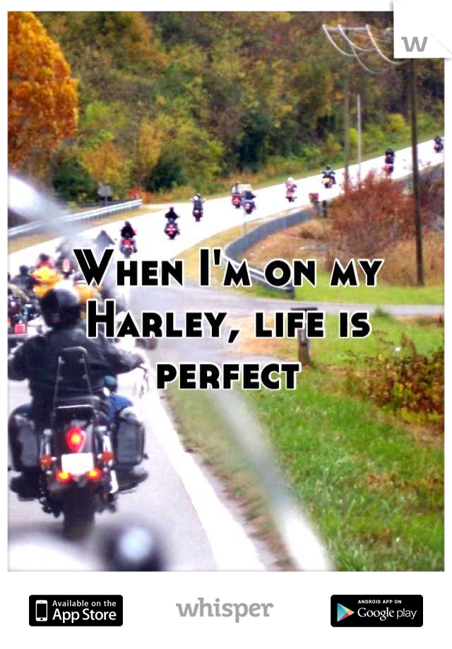 When I'm on my Harley, life is perfect