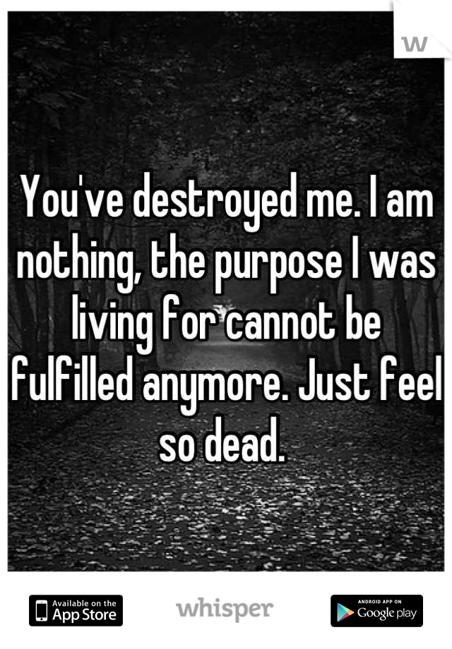 You've destroyed me. I am nothing, the purpose I was living for cannot be fulfilled anymore. Just feel so dead.