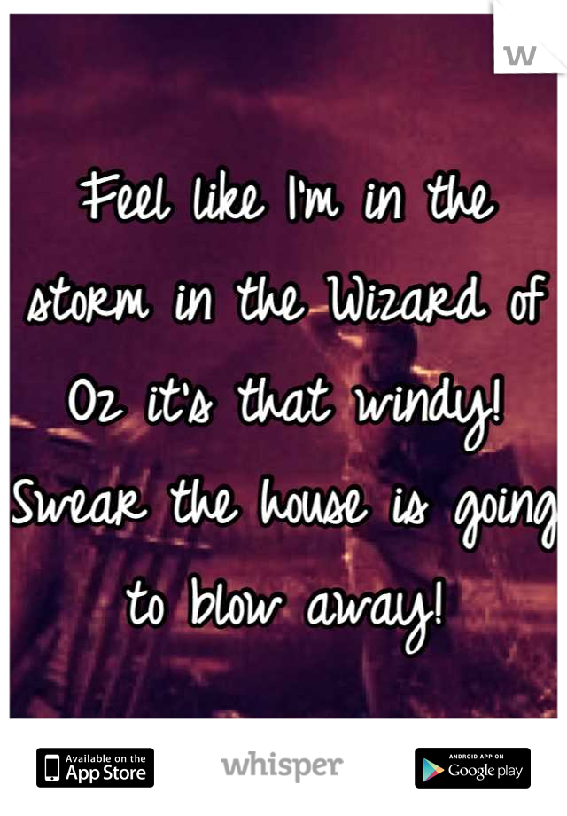 Feel like I'm in the storm in the Wizard of Oz it's that windy! Swear the house is going to blow away!