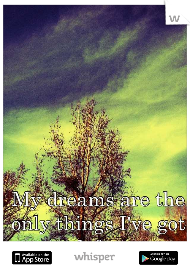 My dreams are the only things I've got left.