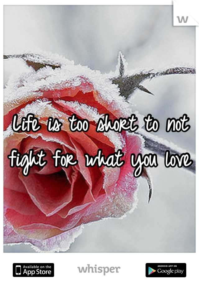 Life is too short to not fight for what you love
