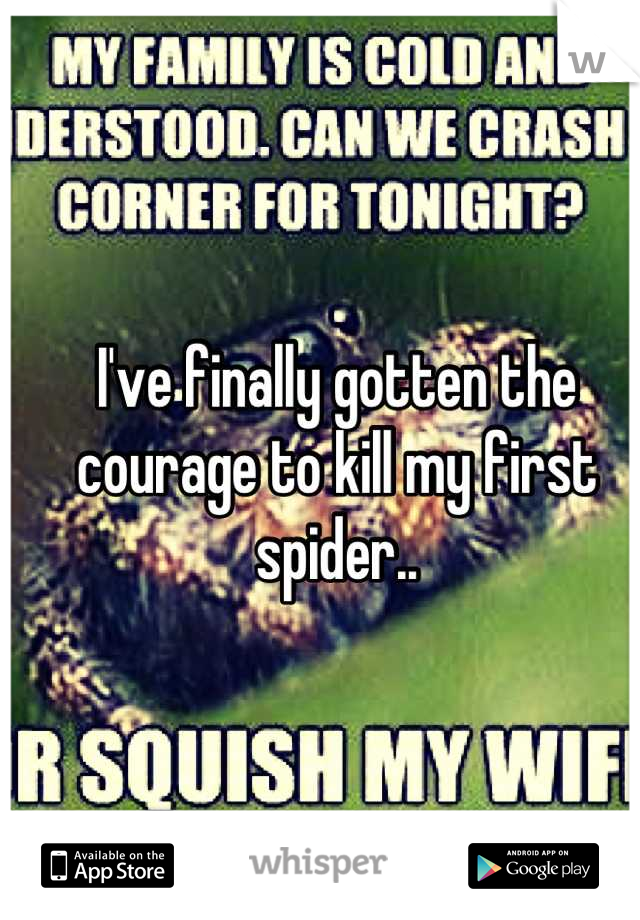 I've finally gotten the courage to kill my first spider..