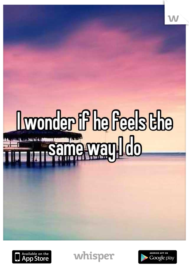 I wonder if he feels the same way I do
