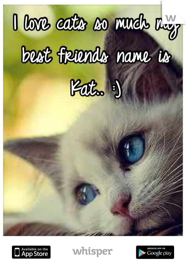 I love cats so much my best friends name is Kat.. :)