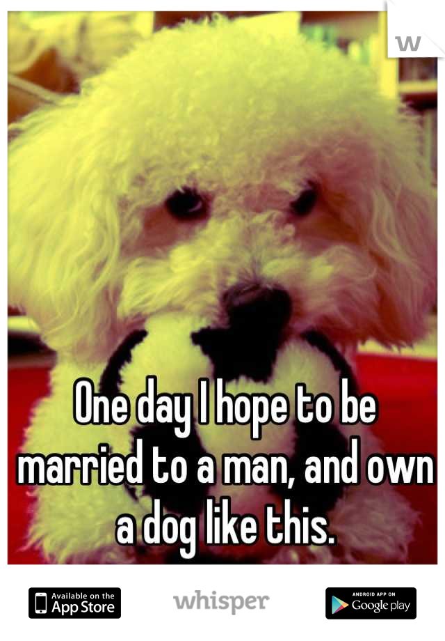 One day I hope to be married to a man, and own a dog like this.