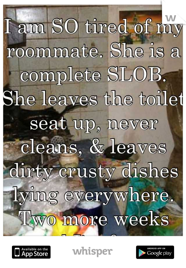 I am SO tired of my roommate. She is a complete SLOB. She leaves the toilet seat up, never cleans, & leaves dirty crusty dishes lying everywhere. Two more weeks and I'm free.
