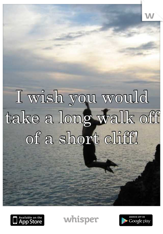 I wish you would take a long walk off of a short cliff!
