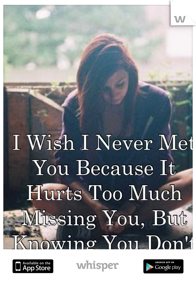 I Wish I Never Met You Because It Hurts Too Much Missing You, But Knowing You Don't Feel The Same..