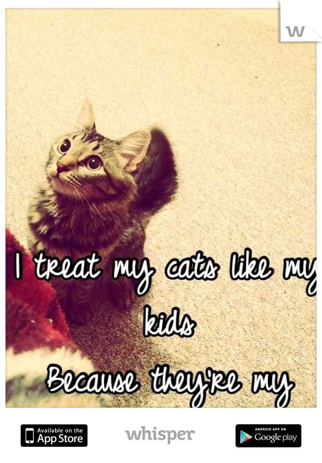 I treat my cats like my kids  Because they're my babies and I love them
