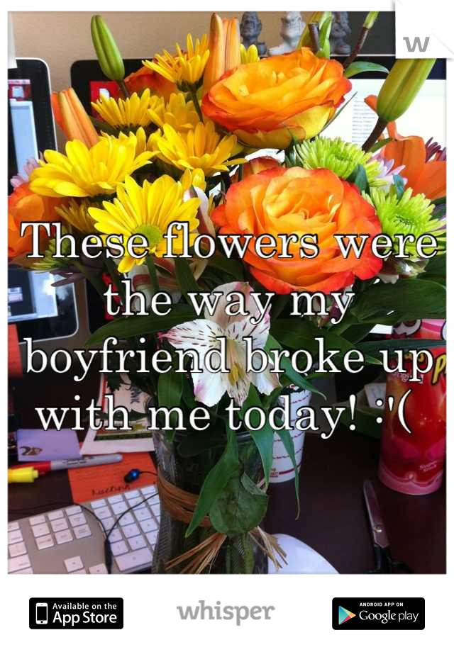 These flowers were the way my boyfriend broke up with me today! :'(