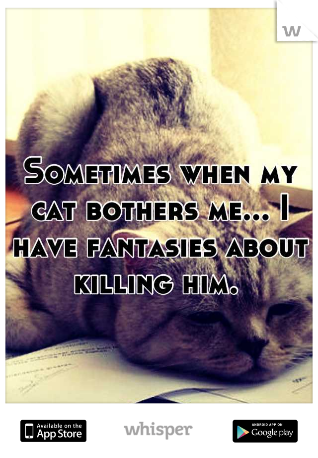 Sometimes when my cat bothers me... I have fantasies about killing him.
