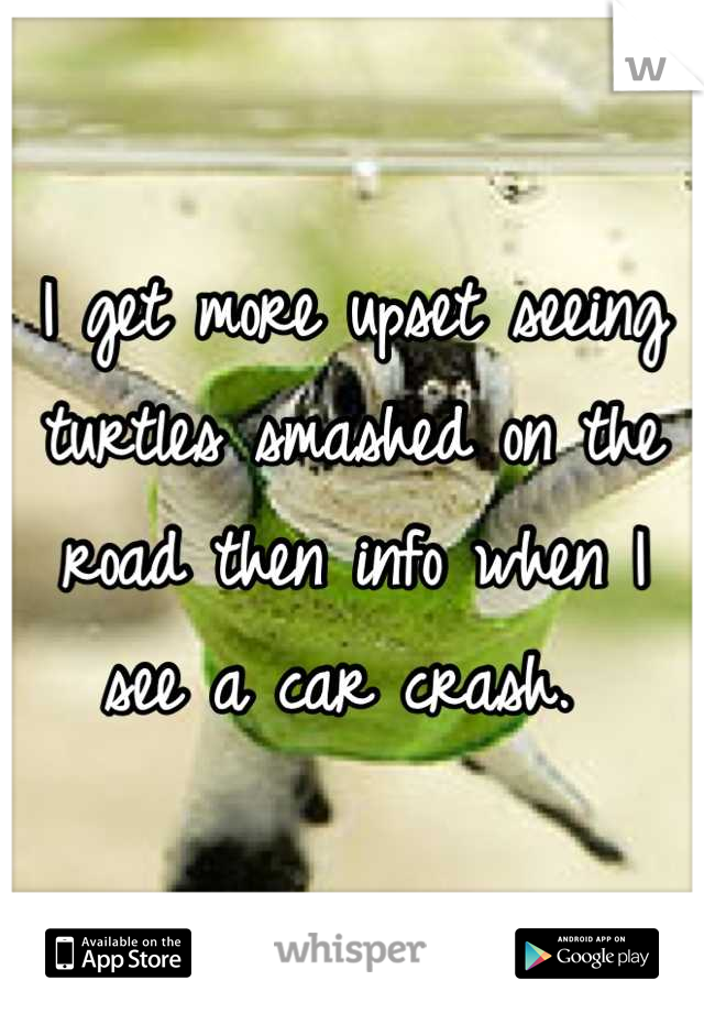 I get more upset seeing turtles smashed on the road then info when I see a car crash.