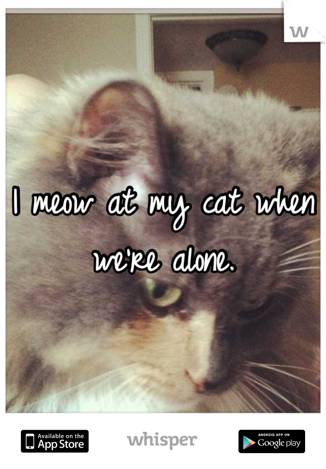 I meow at my cat when we're alone.