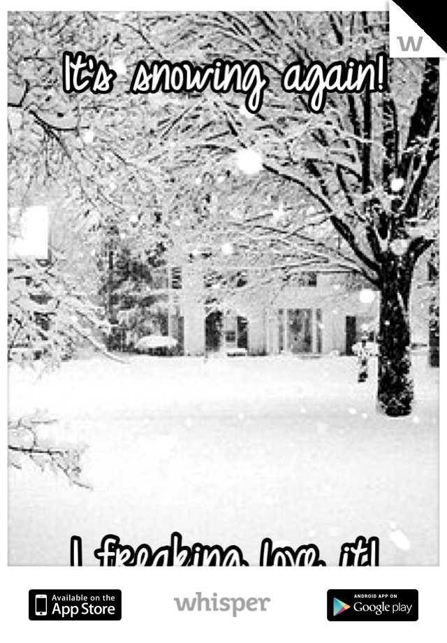 It's snowing again!      I freaking love it!