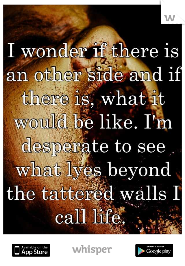 I wonder if there is an other side and if there is, what it would be like. I'm desperate to see what lyes beyond the tattered walls I call life.