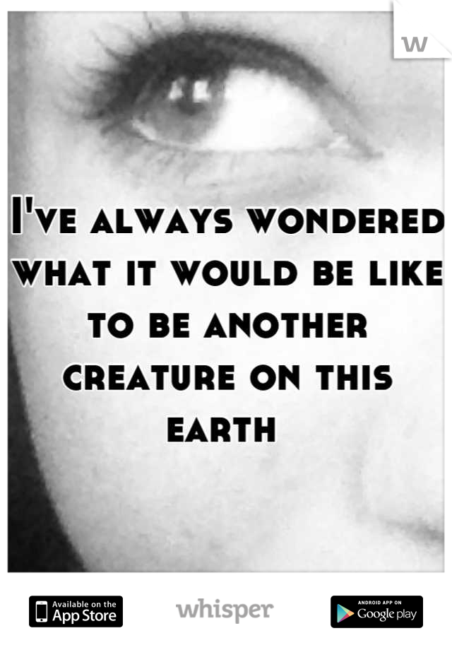 I've always wondered what it would be like to be another creature on this earth