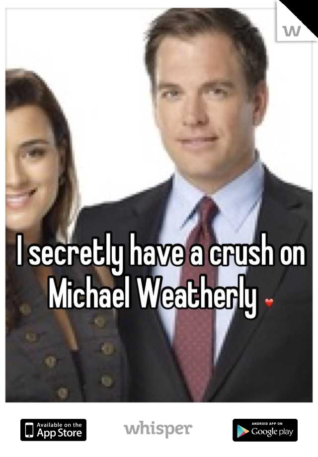 I secretly have a crush on  Michael Weatherly ❤