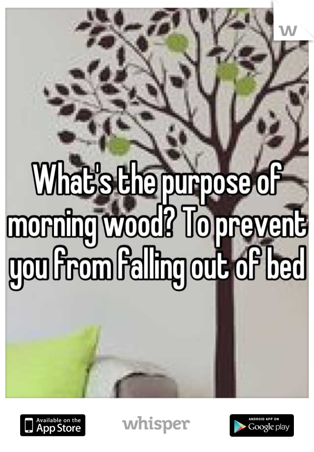 What's the purpose of morning wood? To prevent you from falling out of bed
