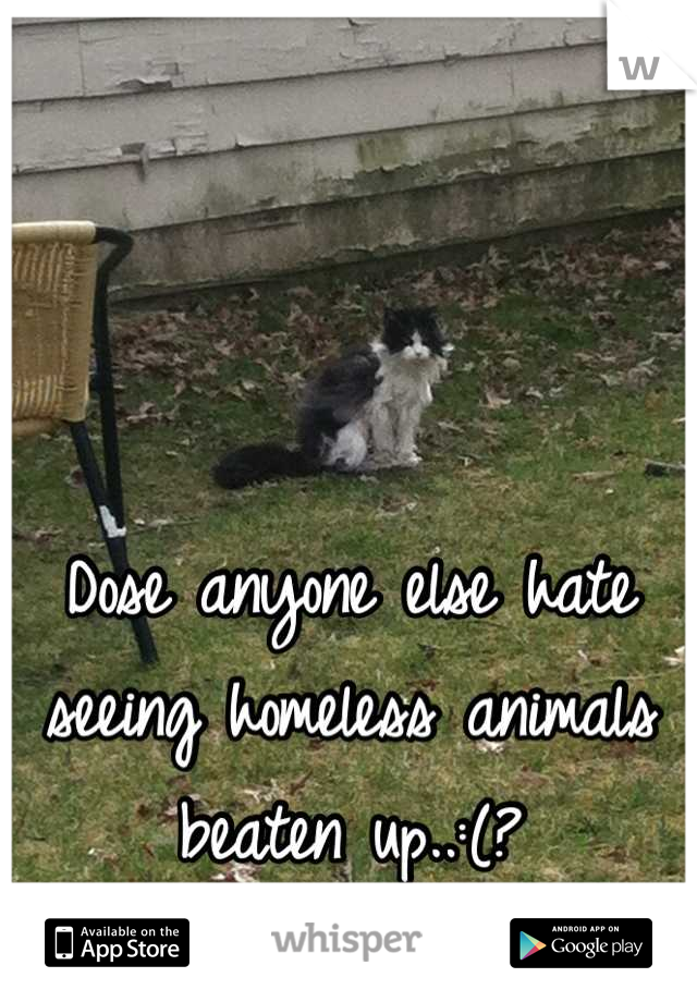 Dose anyone else hate seeing homeless animals beaten up..:(?