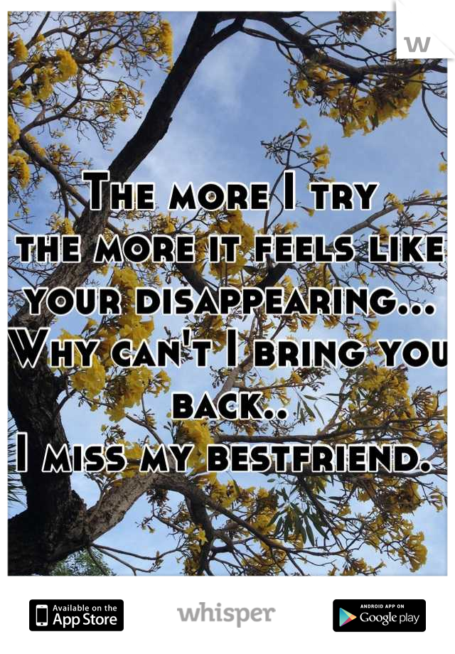 The more I try the more it feels like your disappearing... Why can't I bring you back..  I miss my bestfriend.