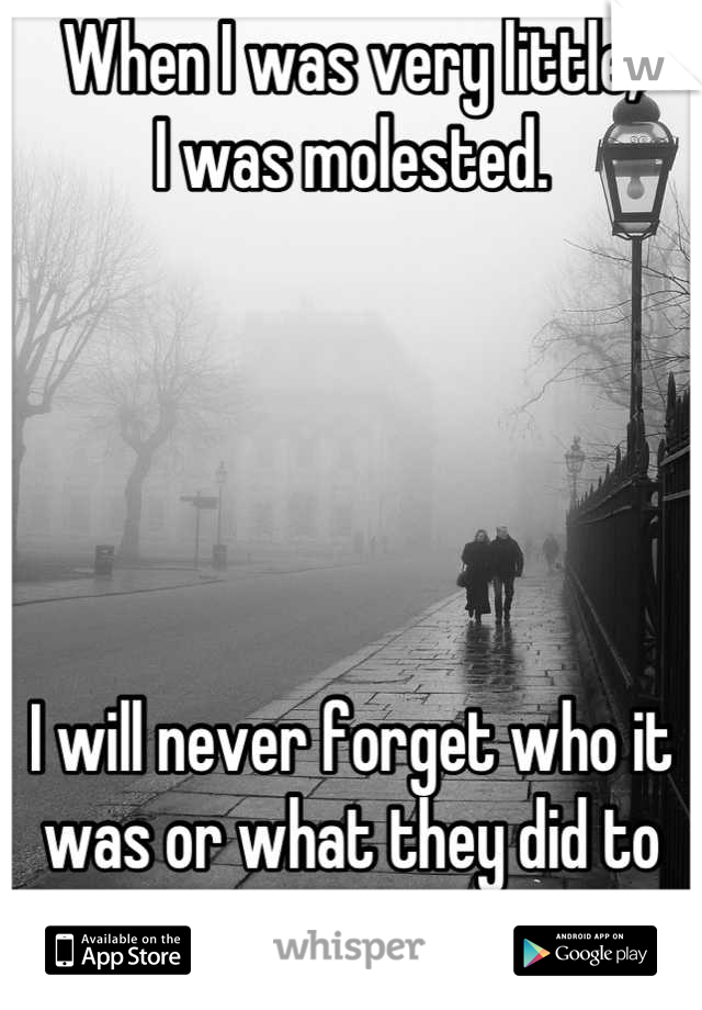 When I was very little, I was molested.      I will never forget who it  was or what they did to me