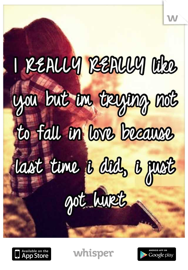 I REALLY REALLY like you but im trying not to fall in love because last time i did, i just got hurt