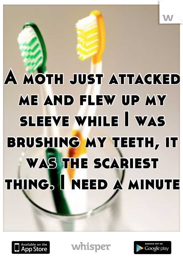 A moth just attacked me and flew up my sleeve while I was brushing my teeth, it was the scariest thing. I need a minute