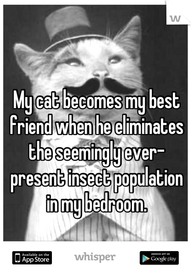 My cat becomes my best friend when he eliminates the seemingly ever-present insect population in my bedroom.