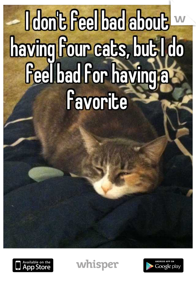 I don't feel bad about having four cats, but I do feel bad for having a favorite
